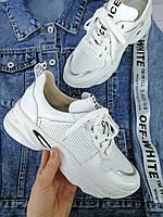 Женские кожаные кроссовки VERINA 055 В наличии  36,38,39,40,41,42 размер
