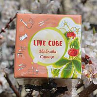"""Набор для выращивания Эко Live Cube """"ЗЕМЛЯНИКА"""" Эко куб. Земляника в горшочке. Семена земляники"""