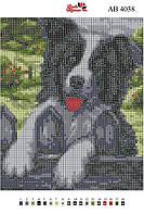 Алмазная вышивка АВ 4038 Собака (полная зашивка)
