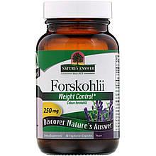 "Колеус форсколии Nature's Answer ""Forskohlii"" для контроля веса, 250 мг (60 капсул)"