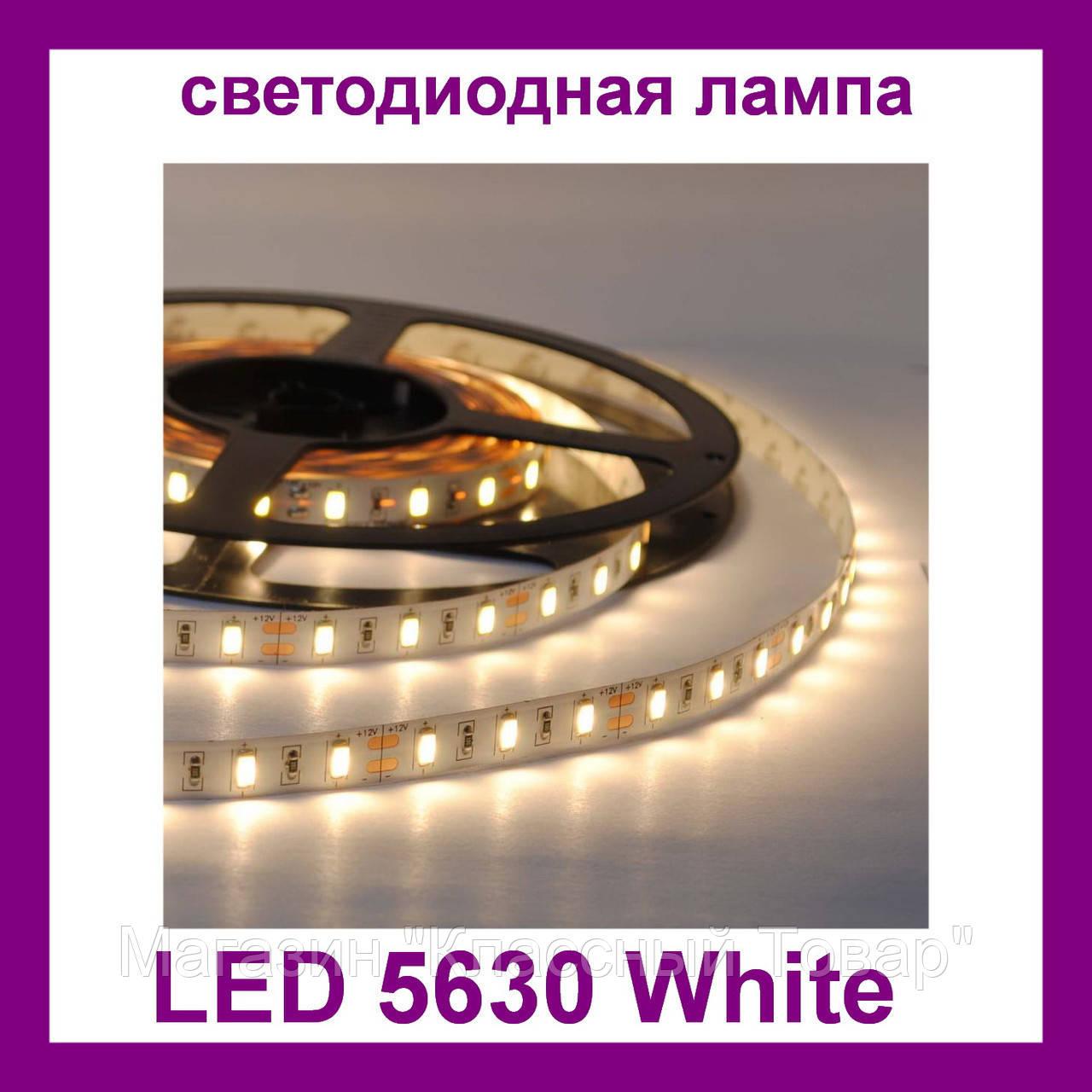 Лента светодиодная белая LED 5630 White - 5 метров в силиконе!Лучший подарок