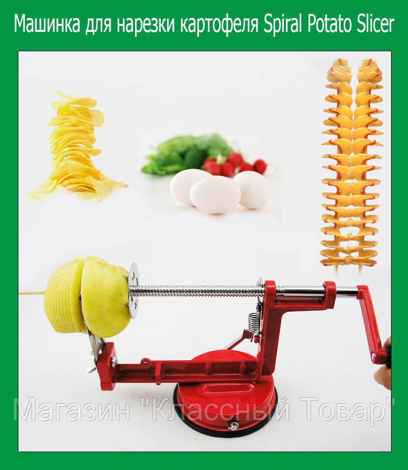 Машинка для нарезки картофеля Spiral Potato Slicer!Лучший подарок
