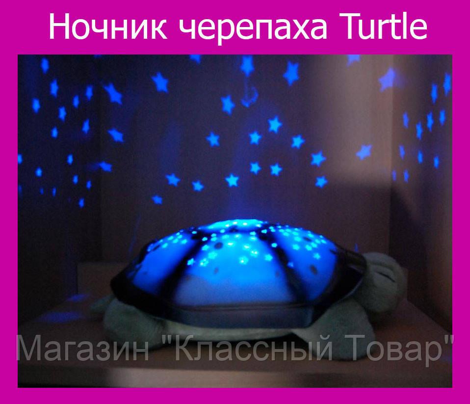 Ночник черепаха Turtle!Лучший подарок