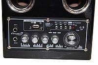 Акустическая система USBFM-68DC!Лучший подарок, фото 1