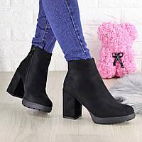 Женские ботинки на каблуке Shelby черные 1451, фото 1
