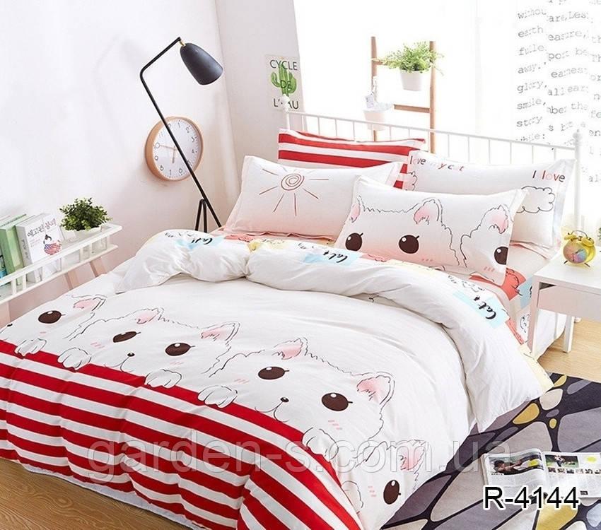Комплект постельного белья TM TAG R4144