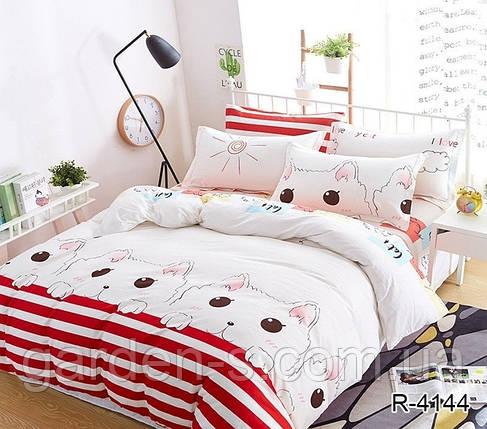 Комплект постельного белья TM TAG R4144, фото 2