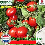 "Семена, томат Дерика F1 ( KS 720), 1000 семян ТМ ""Kitano Seeds"", фото 2"