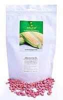 Насіння цукрової кукурудзи Джульєтта (Венеція) F1, Sh2-тип, 1000 на 1.5 сотки, Середньостиглий (81-85днів), фото 1