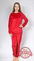 Пижама женская велюр, фото 1