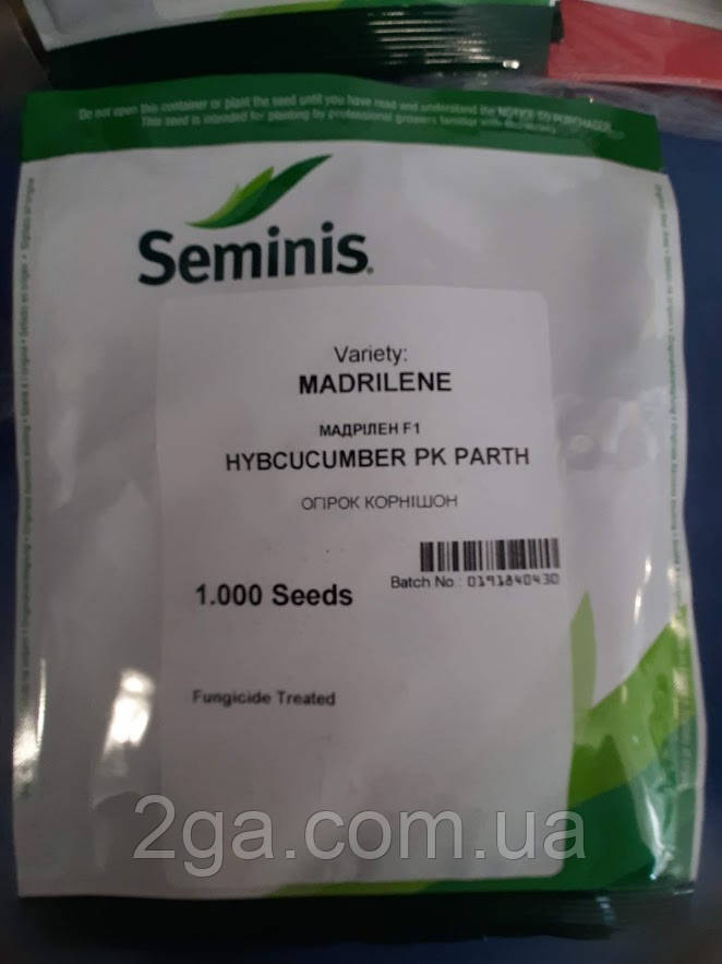 Мадрилен F1 / Madrilene F1 - Огурец, Seminis. 250 семян