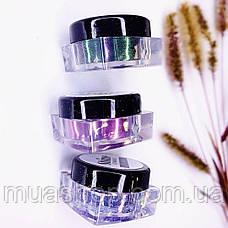 Пигмент для макияжа Shine Cosmetics №17, фото 2