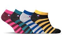 Шкарпетки жіночі Лана Томмі смужка асорті ОПТ