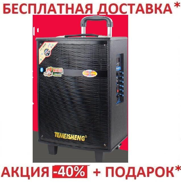 Портативная Акустика SANSUI SS 2-12 на аккумуляторе с радиомикрофонам (200W/USB/Bluetooth)