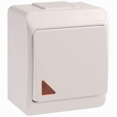 ВС20-1-1-ГБ Выключатель одноклавишный для открытой установки cо световым индикатором IP44 ГЕРМЕС