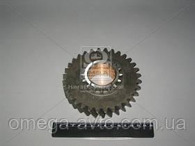 Шестерня 2-передачі ГАЗ 3307, 53 валу вторинного КПП 4 ст. (ГАЗ) 52-1701111