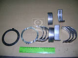 Вкладыши коренные 0,05 ГАЗ 53 с комплектом подшипников упорных (оригинал ЗМЗ) 53-1000102-12, фото 2
