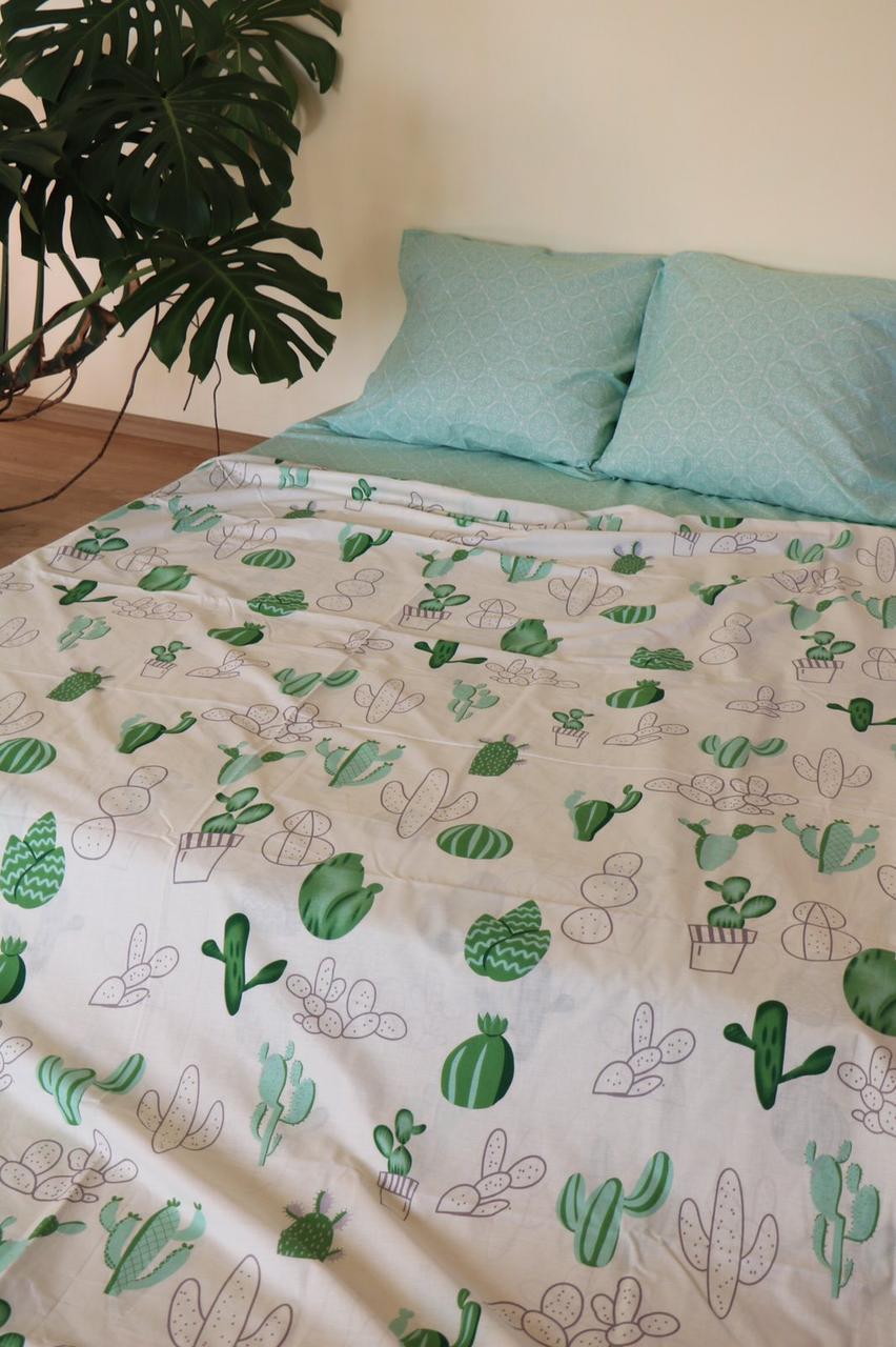 Полуторное постельное бельё бязь Кактус