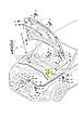 Гайка внутренней отделки М6 на Ауди, фото 3