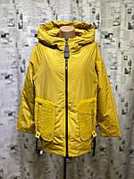 Куртка женская весна-осень Mishele 723-1