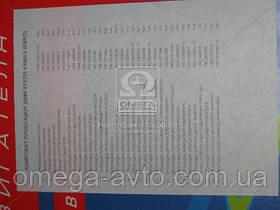 Ремкомплект двигателя (полн.комплект) КАМАЗ ЕВРО (34 наим.) (Украина) Ремкомплект -1003Е