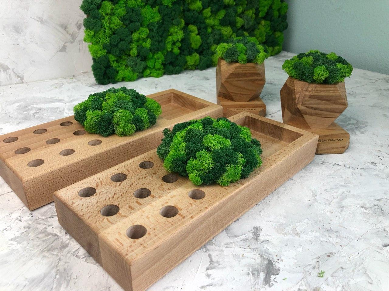 Деревяный органайзер с мохом