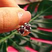 Серебряные серьги для девочки Черепашки - Детские серьги Черепашки серебро, фото 4
