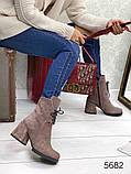 Жіночі демісезонні черевики капучіно на стійкому каблуці, натуральний замш, фото 2