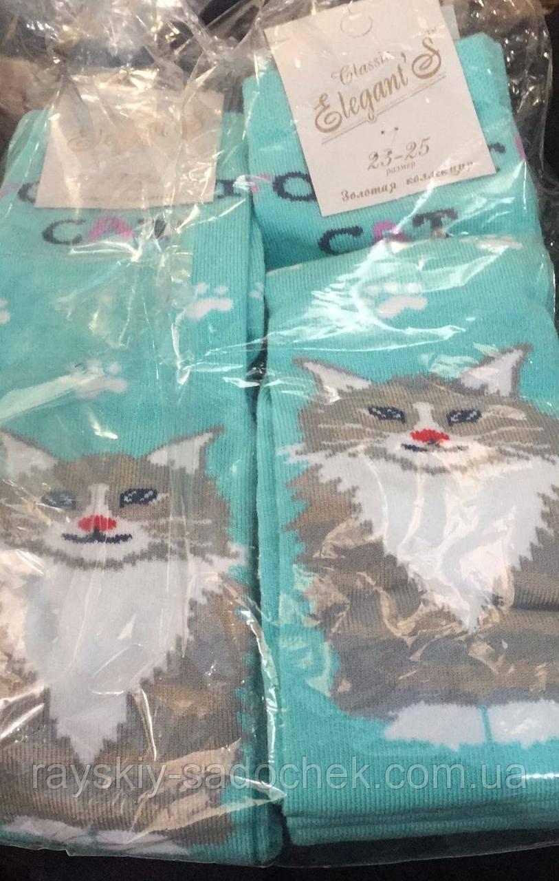 """Шкарпетки з котиком ТМ """"Elegant'S"""" Літні 1 шт"""