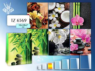 Пакет подарочный бумажный; (16х18х7 см) EXOTIC FLOWERS