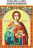 Св. Целит. Пантелеймон