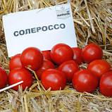 Солероссо F1 семена томата 1000 шт Nunhems Голландия, фото 2