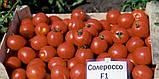 Солероссо F1 семена томата 1000 шт Nunhems Голландия, фото 3