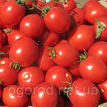 Солероссо F1 10 шт насіння томату низькорослого Nunhems Голландія