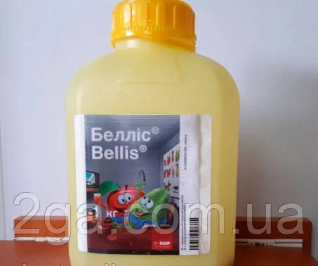 Беллис   в.г.1 кг , фунгицид , BASF срок до 2019 года