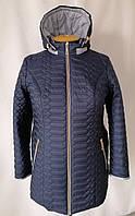 Весна женские Куртки больших размеров  54-68  синий