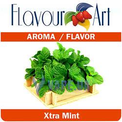 FlavourArt Xtra Mint (Экстра мята)