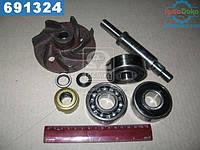 ⭐⭐⭐⭐⭐ Ремкомплект насоса водяного 260-1307116 и их модификации (производство  БЗА)  Р/К-6