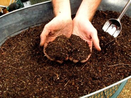 получение компоста в готовых компостных грядках
