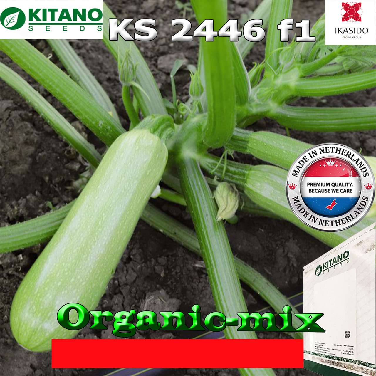 Кабачок пластичный ранний KS 2446 F1, 1000 семян, ТМ Kitano Seeds