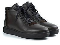 Мужские полуботинки кожаные коричневые на флисе демисезонная обувь Rosso Avangard North Lion 03-227