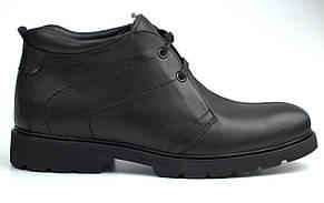 Классические демисезонные полуботинки кожаные черные дезерты на флисе Rosso Avangard Carlo Pa20