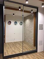 Шкаф купе венге система zola с зеркалом серебро