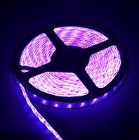 Светодиодная лента 14Вт 60LED, 12В IP20 5м/упак. розовая 5050