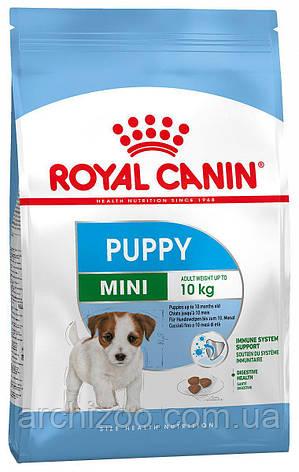 Royal Canin Mini Puppy 0,8кг для щенков мелких пород от 2 до 10 м-цев, фото 2