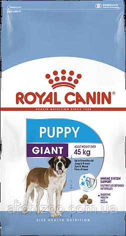 Royal Canin Giant Puppy 1кг для щенков гигантских пород до 8 месяцев, фото 2