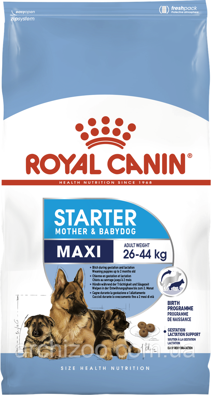 Royal Canin Maxi Starter 1кг для щенков средних пород до 2 месяцев, беременных и кормящих сук