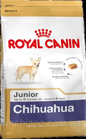 Royal Canin Chihuahua Puppy 500 г для щенков породы чихуахуа, фото 2