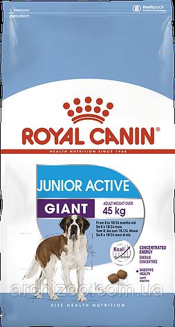Royal Canin Giant Junior Active 15 кг для активных щенков гигантских пород, фото 2