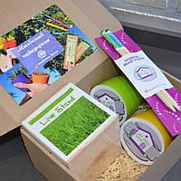 """Подарочный набор с растущими карандашами """"2+2+растущая подставка для канцелярии с семенами газонной травы"""""""